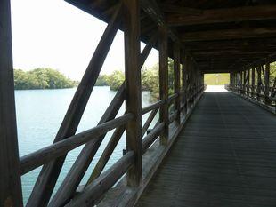 エアポートからの橋.jpg