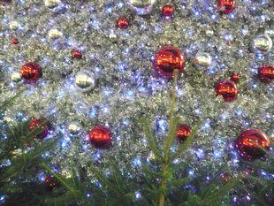 クリスマスイルミ3.jpg