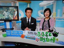 テレビあっちゃん.jpg