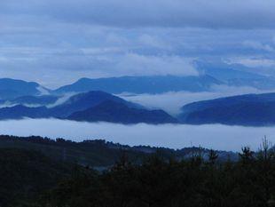 ファーム近くの霧海.jpg