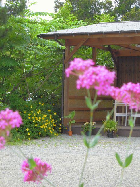 休憩所と花.jpg