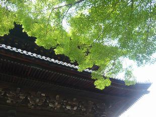 南禅寺.jpg