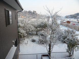 大地震の朝.jpg