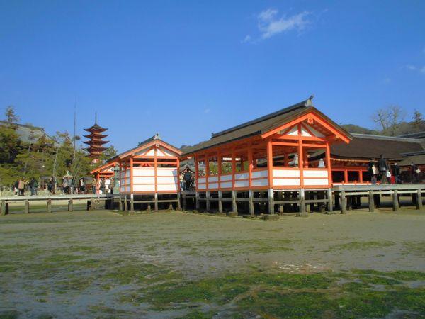 宮島3.jpg