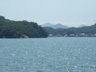 対岸は向島.jpg
