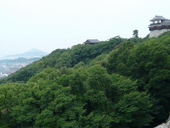 小雨の松山城1.jpg