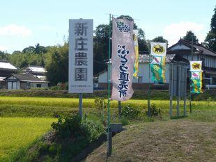 新庄農園.jpg