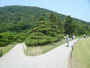 栗林2.jpg