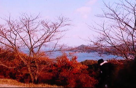 海の上の診療所伯方島5.JPG