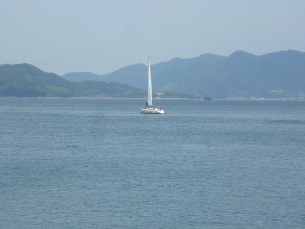 瀬戸のヨット.jpg