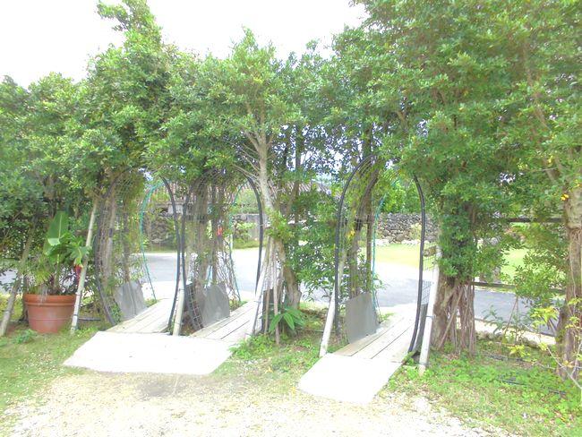 石垣の小道2.jpg