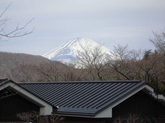 箱根から見た富士山.jpg