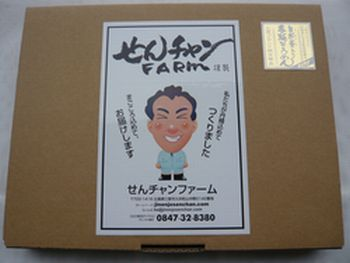 素麺の外箱.jpg