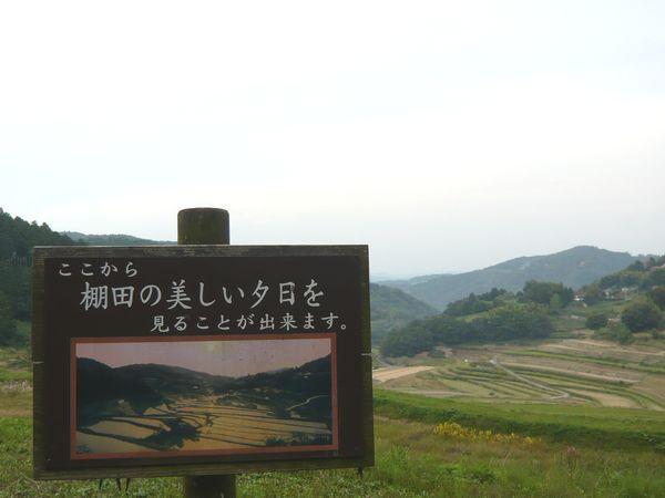 美咲の棚田.jpg
