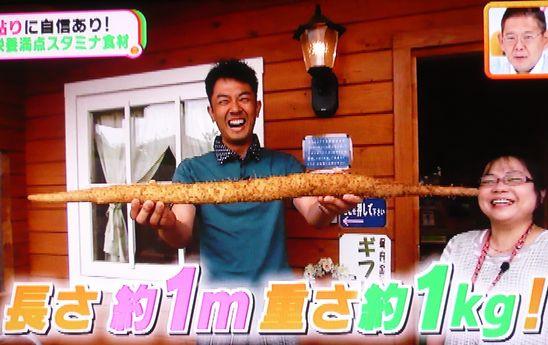 金田アナど自然薯.jpg