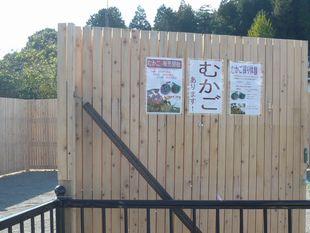 門の広告.jpg