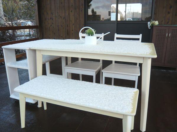 雪の白いテーブル.jpg