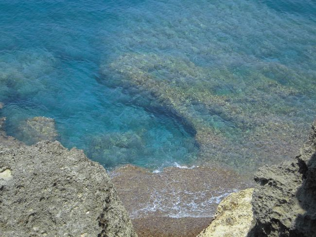 青いさんご礁.jpg