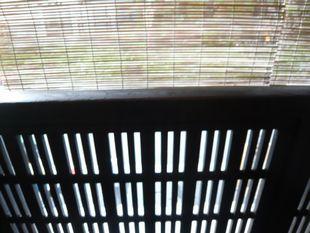鳥や三窓.jpg
