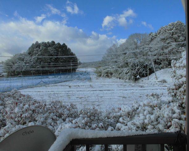 2014年12月17日朝雪景色.jpg