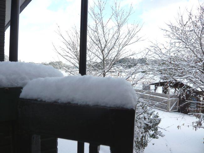 2014年12月17日朝雪景色1.jpg