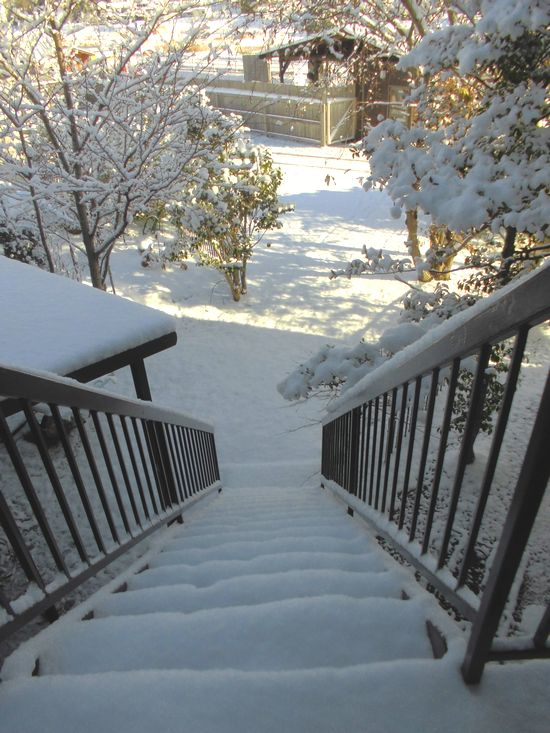 2014年12月18日朝雪景色1.jpg