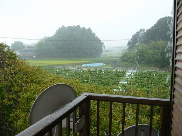 2011年8月豪雨.jpg