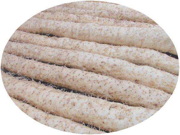 2012年12月自然薯アップ.jpg