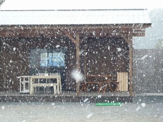 2012春雪.jpg