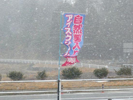 2012春雪1.jpg