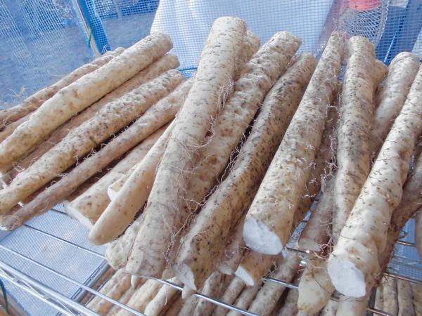2012自然薯干し1.jpg