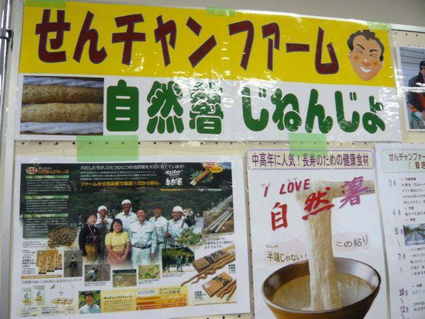 2012.4月19日展示.JPG