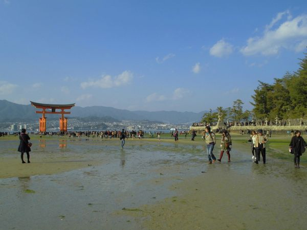 2013宮島1.jpg