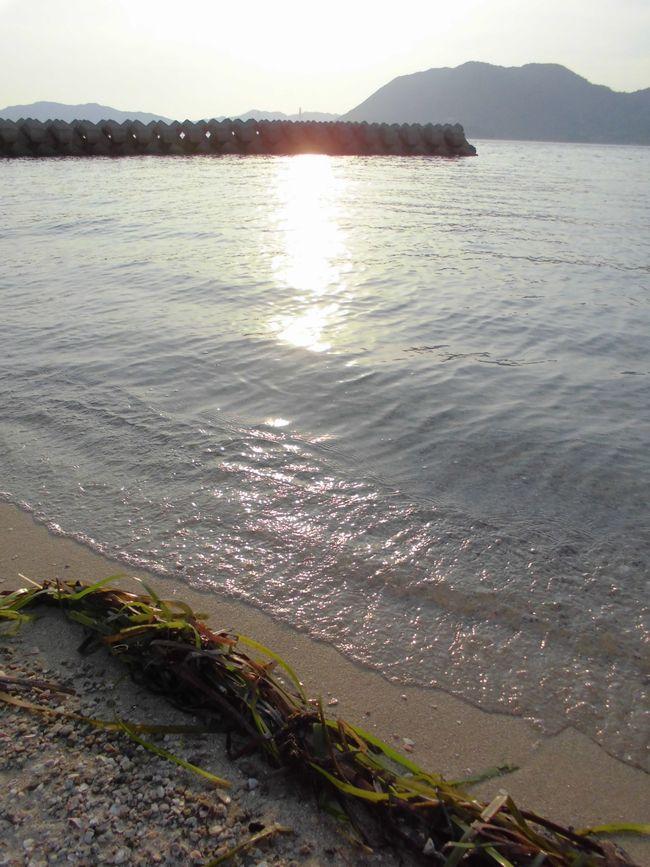 2013年7月末岩城島.jpg