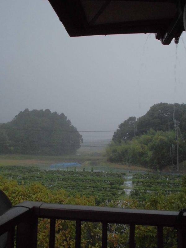 2013年8月23日夕方の大雨.jpg