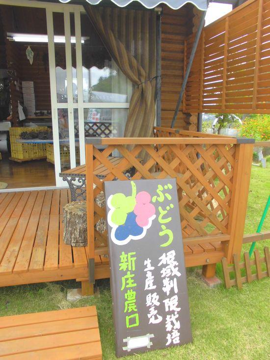 2013新庄農園.jpg