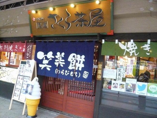 2014さくら茶屋3.jpg