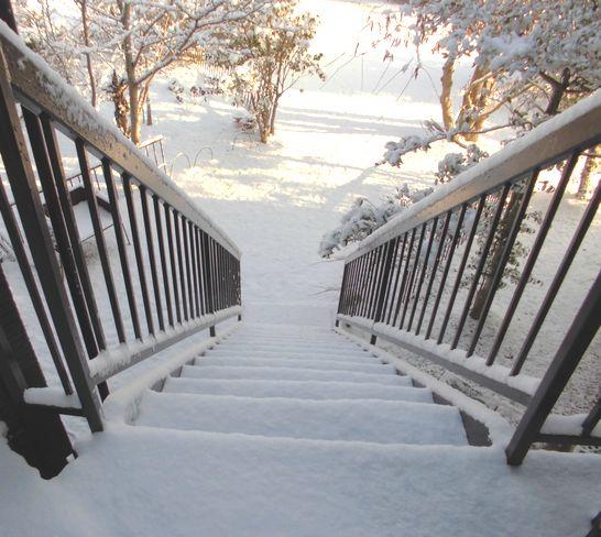 2014年1月19日雪1.jpg