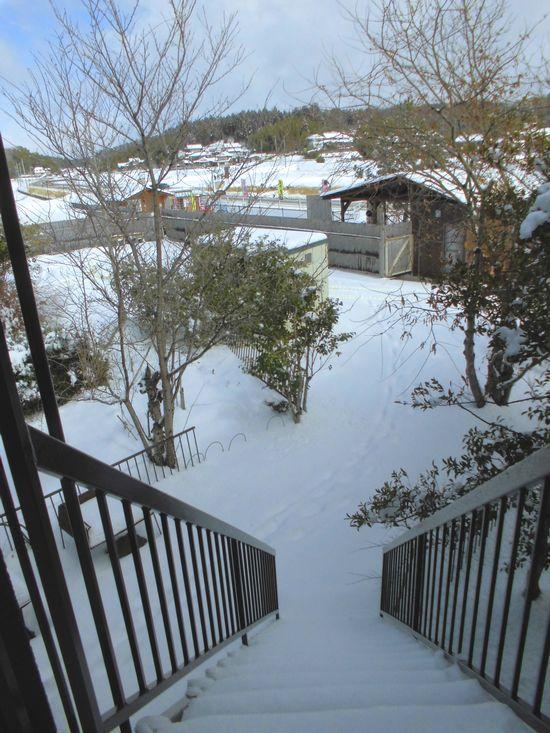 2014年2月8日雪2.jpg