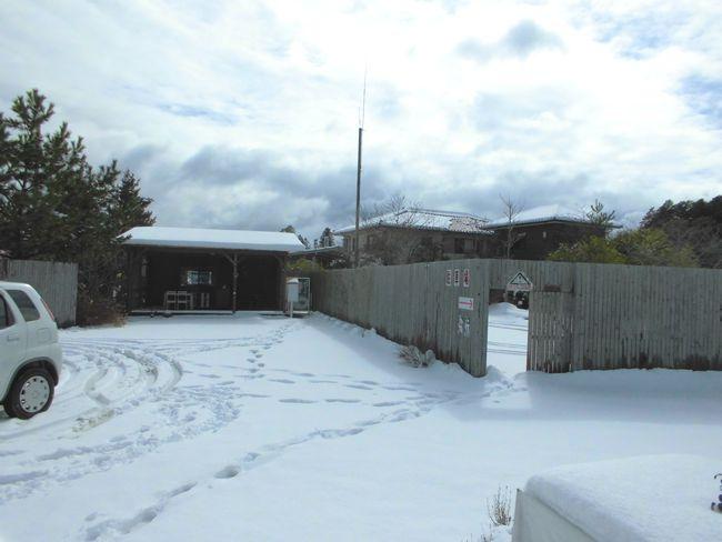 2014年2月8日雪3.jpg