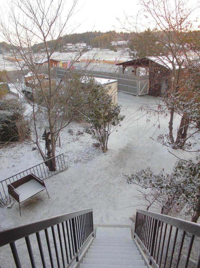 2014年3月10日の雪1.jpg