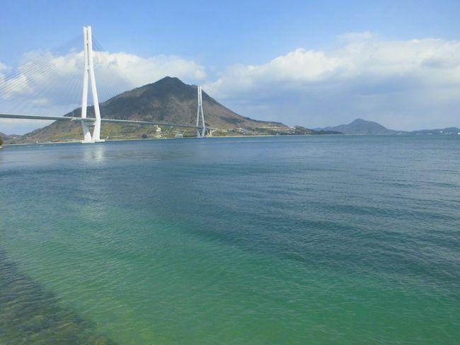 2015年春近い多々羅大橋.jpg