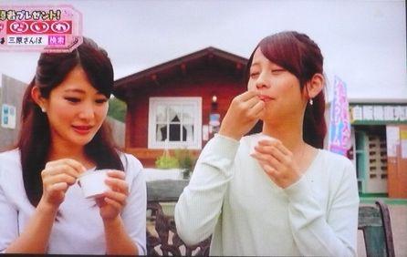 2015広島ホームテレビ2.jpg