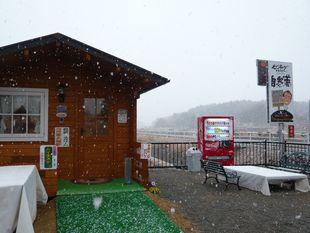 3月の雪.jpg