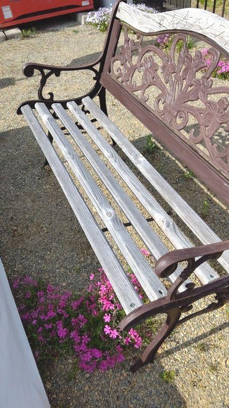 ベンチの所に芝桜