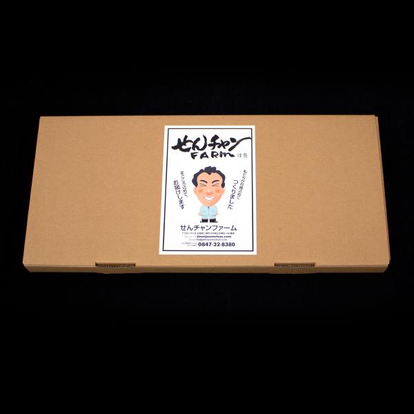 梱包箱外観 自然薯入りそうめん(250g×5袋)の画像3